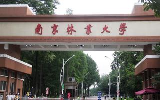 南京林业大学MBA